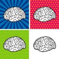 brain-quadrants